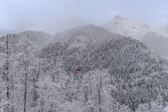 Zimy drewna krajobraz Zdjęcie Stock