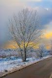 Zimy droga Zdjęcie Stock