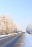 Zimy droga przez śnieżnych lasów Obrazy Stock