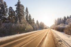 Zimy droga przez śnieżnych lasów Obraz Royalty Free
