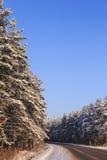 Zimy droga przez śnieżnych lasów Zdjęcia Royalty Free