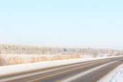 Zimy droga przez śnieżnych poly i lasów Obraz Royalty Free