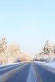 Zimy droga przez śnieżnych poly i lasów Fotografia Royalty Free