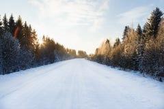 Zimy droga przez lasu Zdjęcie Stock