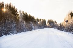 Zimy droga przez lasu Obrazy Royalty Free
