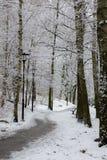 Zimy droga zakrywająca w śniegu Zdjęcia Royalty Free