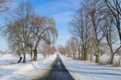 Zimy drogi krajobraz, śnieżni pola i drzewa, Zdjęcia Royalty Free