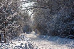 Zimy drogi krajobraz fotografia royalty free