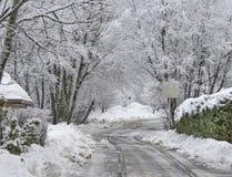 Zimy drogi krajobraz Obrazy Royalty Free