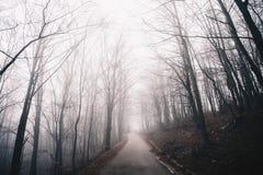 Zimy drogi Mgłowy krajobraz obrazy stock