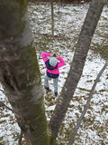 Zimy fotografia zdjęcie stock