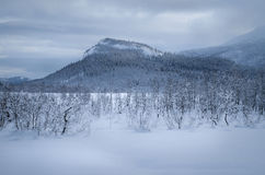 Zimy góry krajobraz Zdjęcia Royalty Free