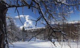 Zimy halna lasowa północ Urals13 Zdjęcia Royalty Free