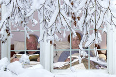 Zimy hibernacja Zdjęcia Royalty Free