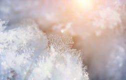 Zimy hoarfrost, lód i śnieg, xmas tło Zdjęcie Royalty Free