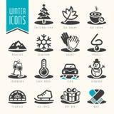Zimy ikony set Fotografia Royalty Free