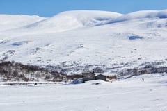Zimy Jotunheimen park narodowy Fotografia Royalty Free