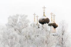 Zimy katedra Zdjęcie Royalty Free