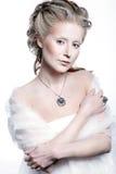 Zimy królowej kobiety śnieżny portret Zdjęcia Royalty Free