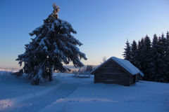 Zimy kraina cudów Zdjęcie Stock