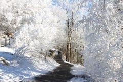 Zimy kraina cudów Zdjęcia Royalty Free