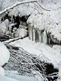 Zimy kraina cudów Zdjęcia Stock