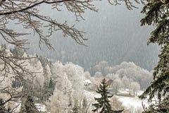 Zimy krainy cudów halna sceneria z starą świerczyną i sosną w austriackich Alps Góra krajobraz Semmering fotografia stock