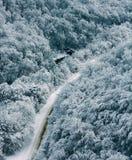 Zimy krajobrazowa halna droga w lesie Obraz Royalty Free