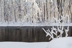 Zimy krajobrazowa lasowa śnieżna woda rzeczna Zdjęcie Royalty Free