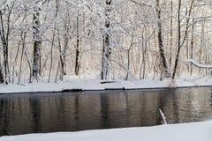 Zimy krajobrazowa lasowa śnieżna woda rzeczna Fotografia Royalty Free