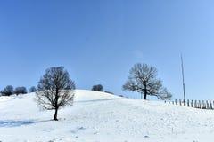 Zimy krajobrazowa tapeta Fotografia Stock