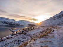Zimy landcape w Iceland Zdjęcie Royalty Free