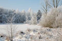 Zimy landschap obrazy royalty free