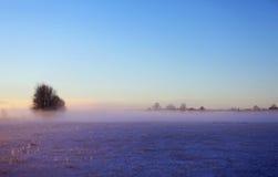 Zimy mgła obraz stock
