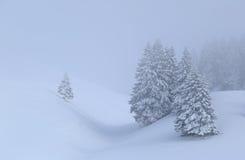 Zimy mgła obraz royalty free