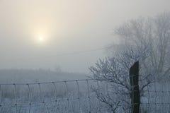 Zimy mgła Fotografia Stock