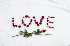Zimy miłość Zdjęcie Stock