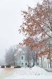 Zimy miasta krajobraz Obrazy Royalty Free