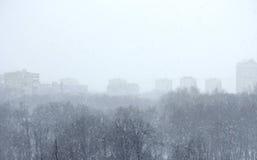 Zimy miasta krajobraz w mgle i parku Fotografia Stock