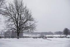 Zimy miasta krajobraz Zakrywający z śniegiem zima park Ławki un Obrazy Stock