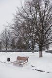 Zimy miasta krajobraz Zakrywający z śniegiem zima park Ławki un Fotografia Royalty Free