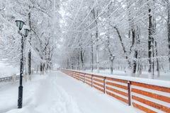 Zimy miasta park w ranku obraz royalty free