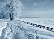 Zimy natura, wybrzeże rzeka Fotografia Stock
