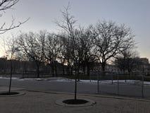 Zimy nieba światła zdjęcie royalty free