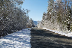 Zimy śnieżna droga w niebieskim niebie i lesie Fotografia Stock