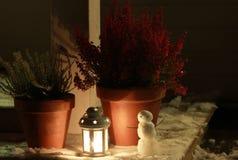 Zimy noc Fotografia Royalty Free