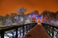 Zimy noc w parku Zdjęcia Stock