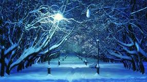 Zimy nocy parkowa scena Obrazy Royalty Free