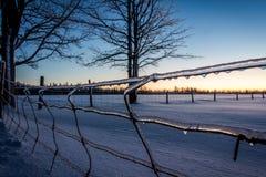 Zimy ogrodzenie Obrazy Royalty Free