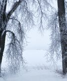 Zimy otoczka obrazy stock